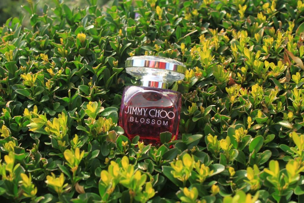 Jimmy Choo Parfüm